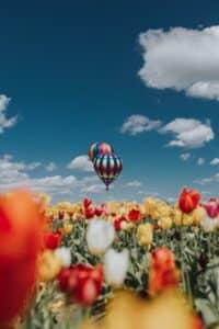 Fliege im Luftballon - Ideer fur das Date